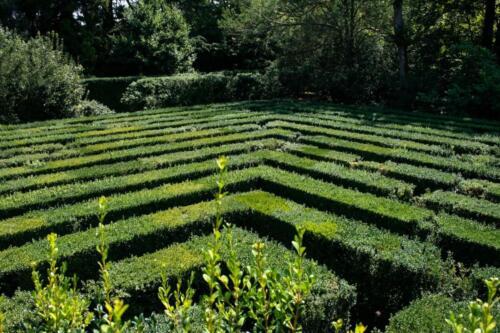 45 - Il Labirinto, particolare