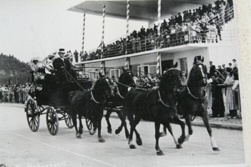 19 - Abano Terme, Concorso Ippico del 4 luglio 1954