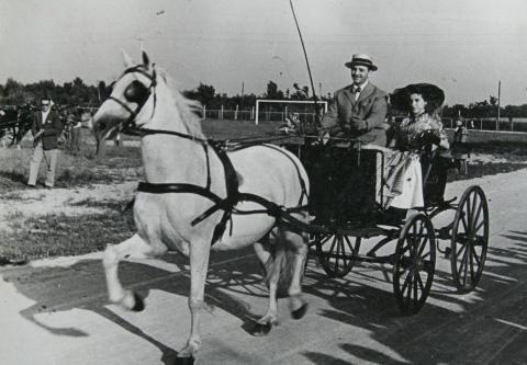 20 - Abano Terme, Concorso Ippico del 4 luglio 1954